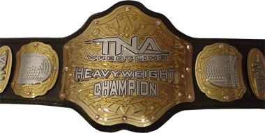 tna world heavyweight championship. Black Bedroom Furniture Sets. Home Design Ideas